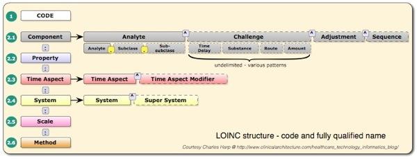 Loinc structure
